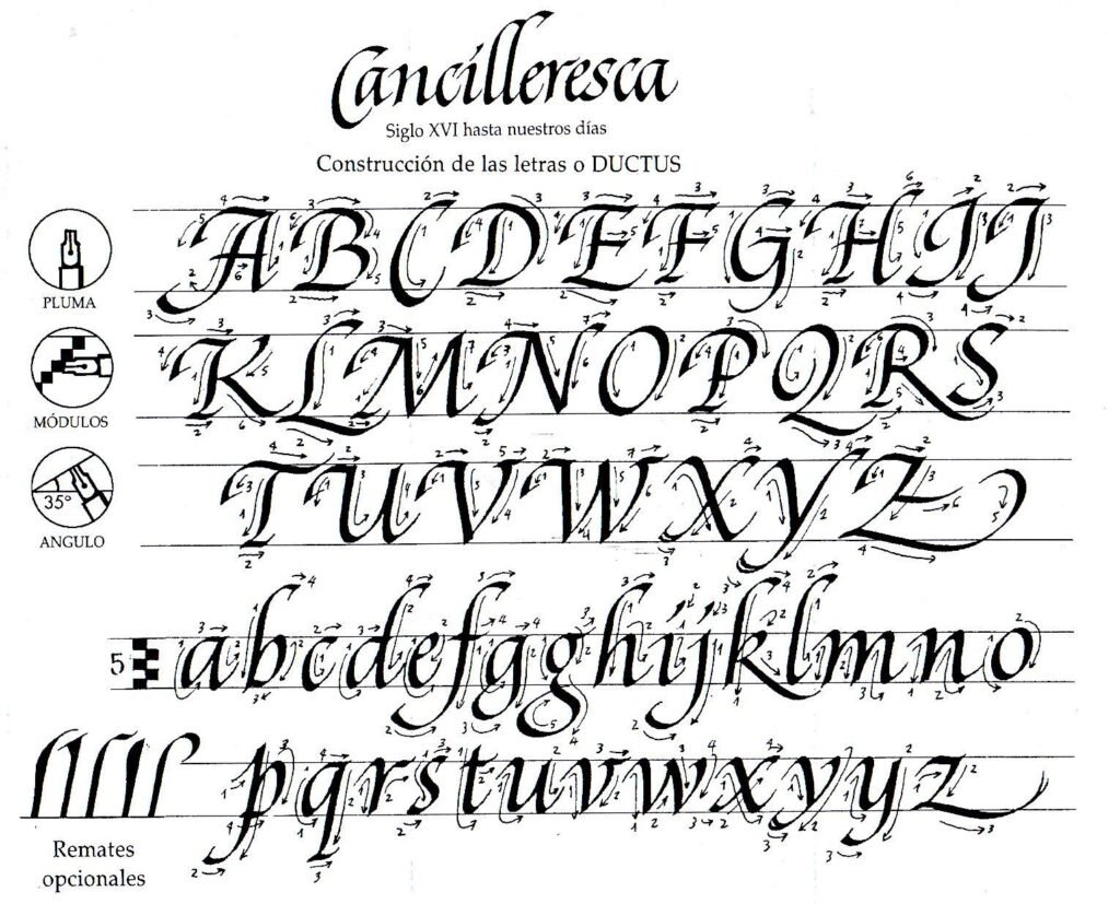 Italic calligraphy ducts